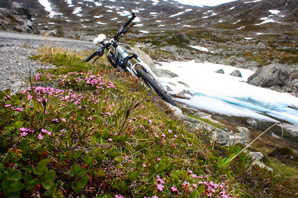 Норвегия велотур