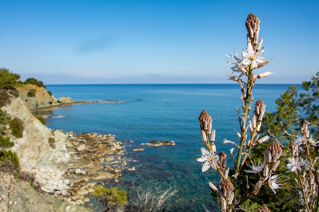 Західний берег півостріва Акамас