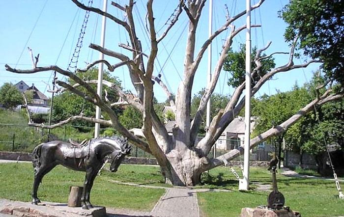 Історико-культурний комплекс «700-річний Запорізький дуб»